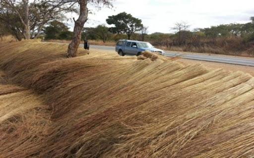 EMA applauds grass harvesters in Gweru
