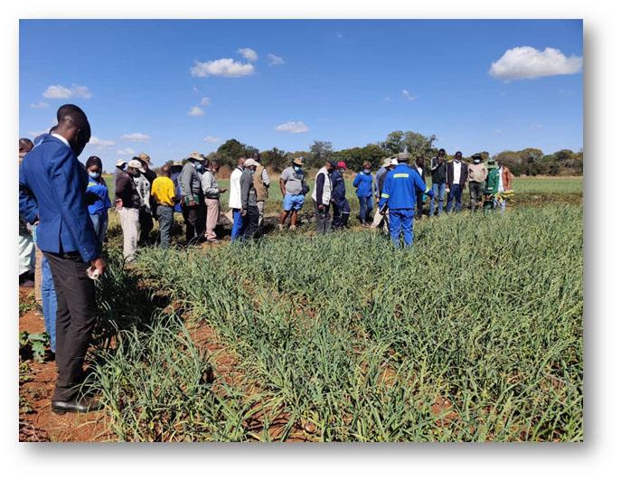 Douglas Msipa breaks new farming grounds